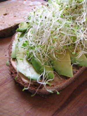 Avocado Yumwich