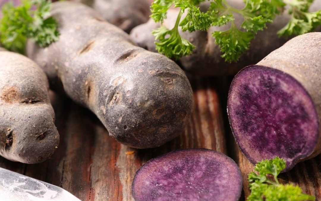 Health Benefits of Purple Potatoes!