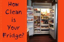 Clean Fridge_SM