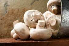 The Delectable Mushroom PLUS a Free Recipe