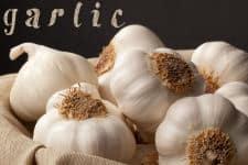 Garlic_SM