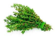 Time to talk about Thyme!