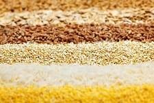 The great grains debate