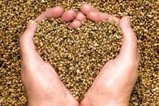 I heart hemp hearts!