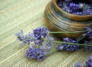 Lavender, How to cook with Lavender, Organic Lavender