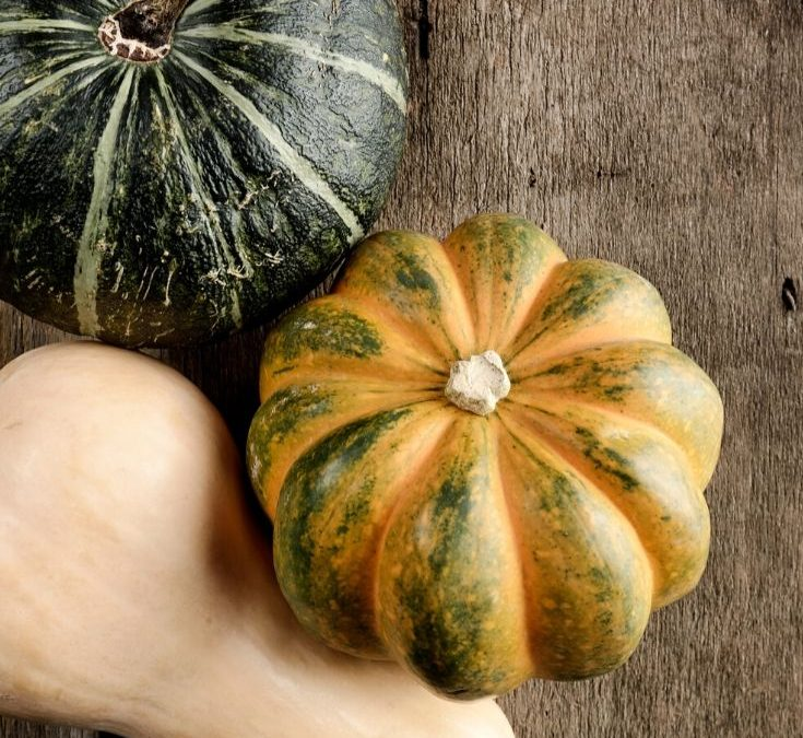It's always time for winter squash!