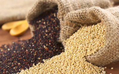 "Quinoa: Gluten-free ""grain"" or is it a seed?"