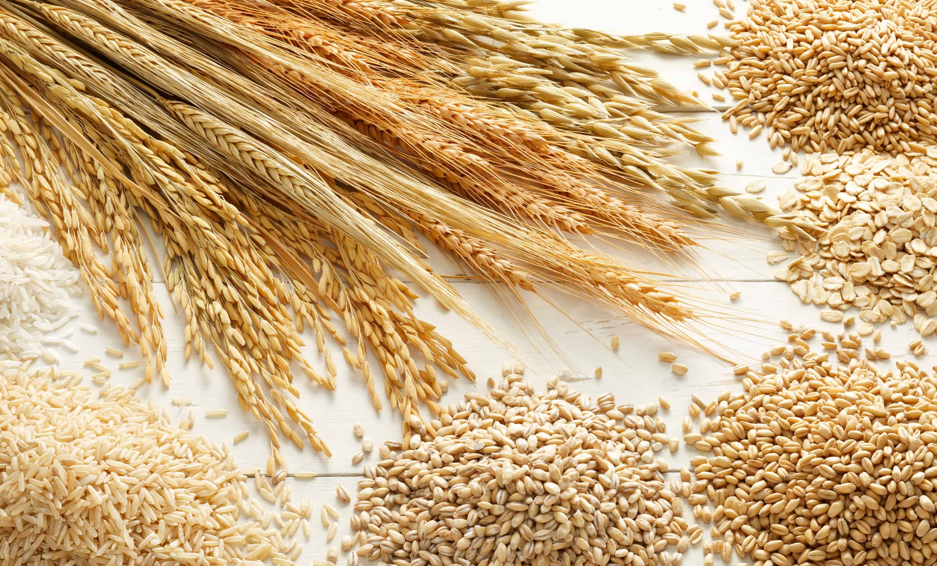 Why Whole Grains Matter
