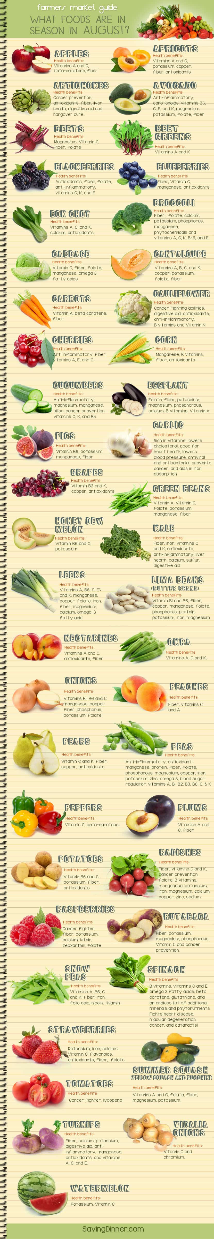 August Farmer's Market Guide Infographic