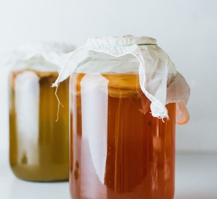 two large jars of kombucha topped with cheese cloth on a white surface