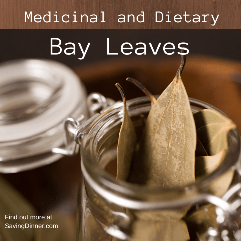 Bay Leaves Medicinal and Dietary