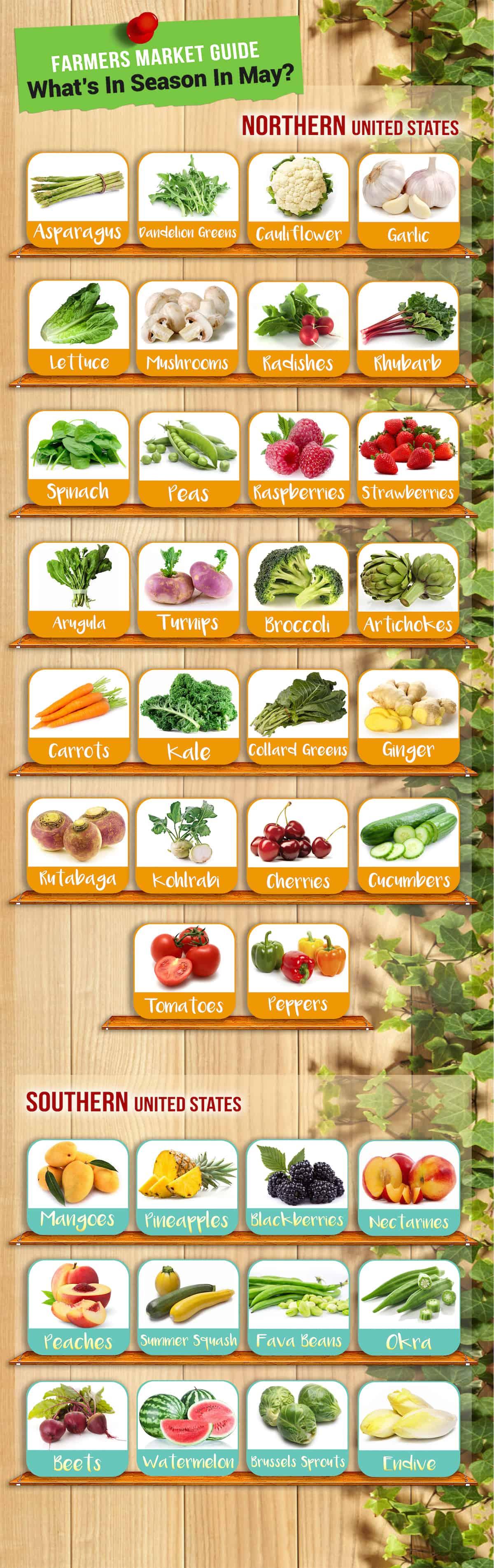 Farmer's Market Guide-May copy