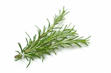 Let's Get to Know Rosemary and its healthy benefits